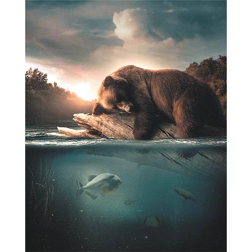 Floating Bear