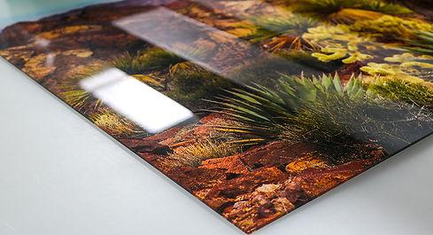 Plexiglas-print-kunst-art-plexi-art-wand