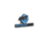 print flash logo.png