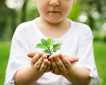 little-boy-holding-soil-and-plant-in-the