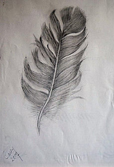 20170714-Feather-finished.jpg