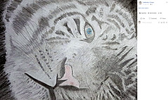 20170418-White-Tiger-finished.jpg