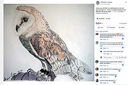 20170706 bertie owl finished.jpg