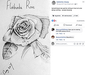 20170619 floribunda rose finished.jpg