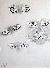 20170516-Cats-faces-Practice-Finished.jp
