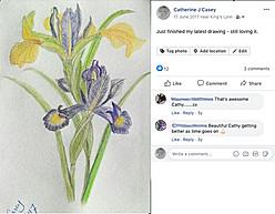 20170617 purple iris finished.jpg