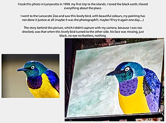 20170427-BlueYellow-Bird-Finished.jpg