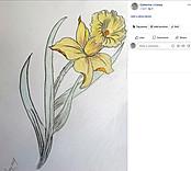 20170604 Daffodil Finished.jpg