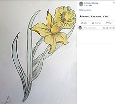 20170604 Daffodil Finished.jpg