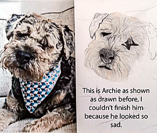 20170710 Archie not finished.jpg