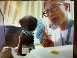 珍惜生命 — 寵物醫生講座