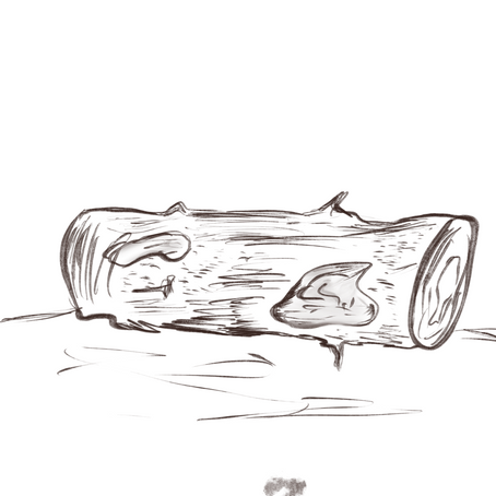 Rotted Logs.