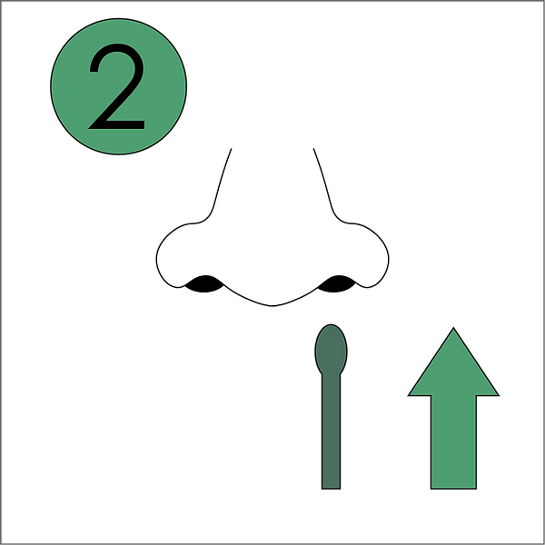 Halo Icons_Step2_v1.png