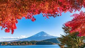 「秋が無い?」