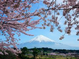 「日本の楽しい春は近い!」