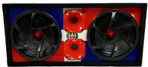 "VOICEBOX® Dual 10"" Midrange Enclosure with Horns - DOMINICAN REPUBLIC"