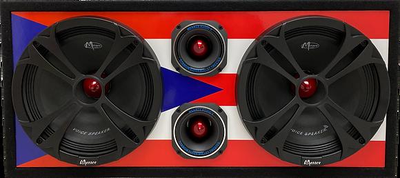 "VOICEBOX® Dual 10"" Midrange Enclosure with Tweeters - PUERTO RICO"