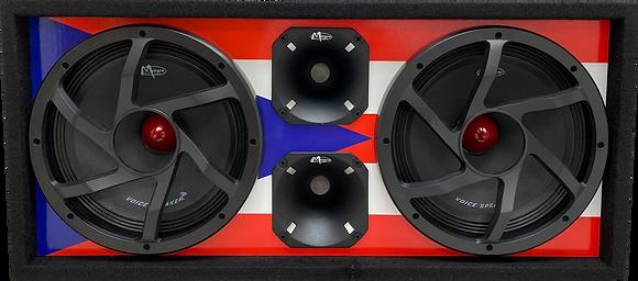 "VOICEBOX® Dual 10"" Midrange Enclosure with Horns - PUERTO RICO"