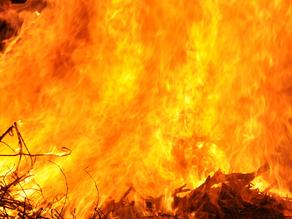 Protect Your Home This Bushfire Season