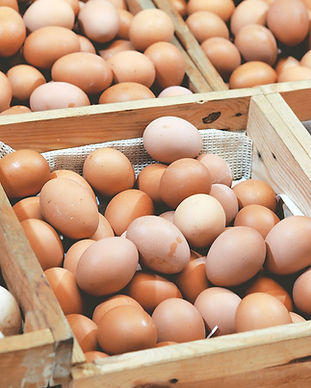 Our tasty breakfast barms use local organic fresh eggs from Cheshire based Red House Farm.