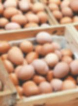 Frische regionale Eier