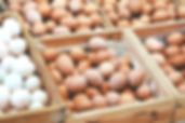 farm eggs free range sustainable pastured