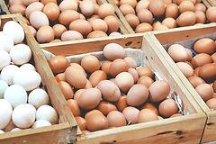 Entrega de huevo