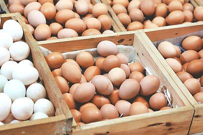 Cage-free, free-range Eggs