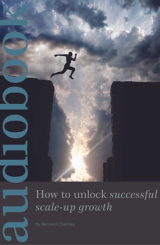 How to Unlock Successful Scale Up Growth (Audio Book)