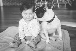 Photo chien et bébé