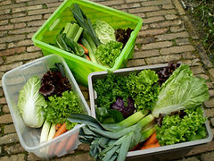 groentemandjes kleibeek.jpg