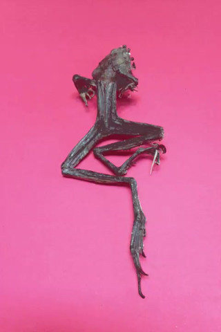 Froggs