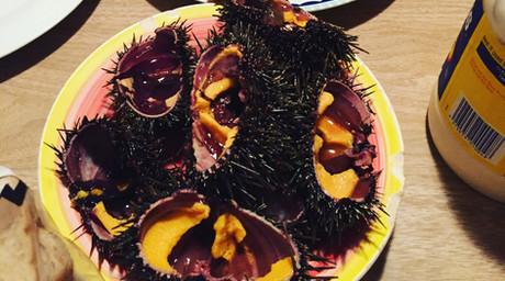 East Coast Kiwi Cusine