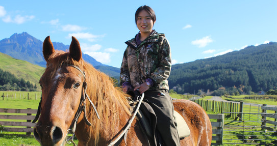 Horse riding and trekking