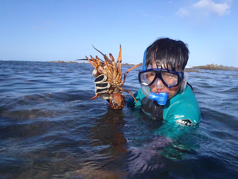 Crayfish learning