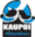 Kaupoi%20Logo_edited.png