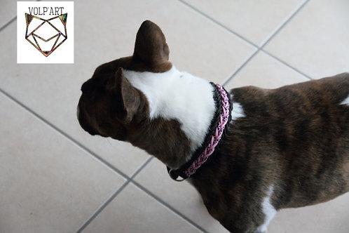 Collier coloris rose-noir pour chien / chat