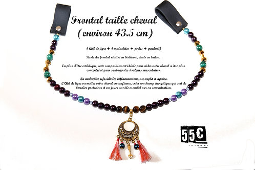 FRONTAL Disponible - taille cheval
