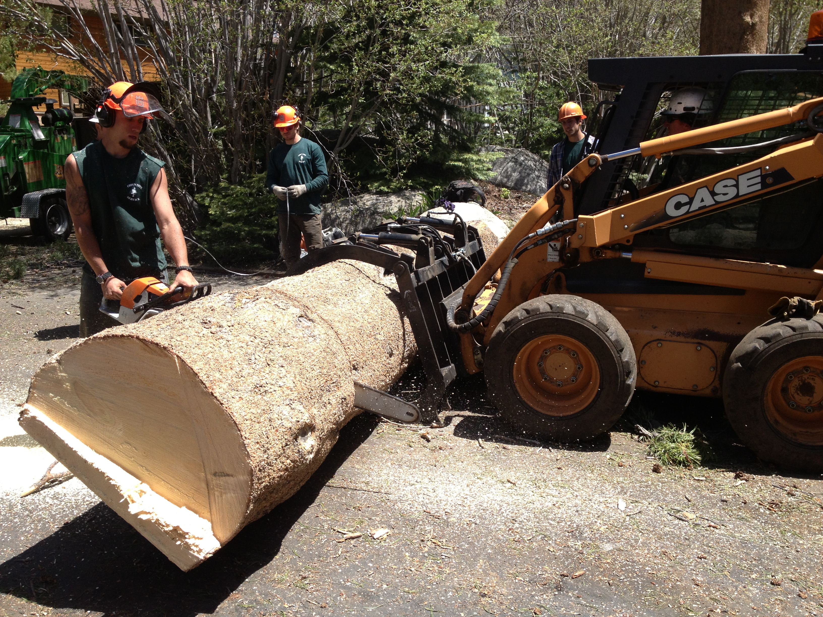 cutting for transportation to yard