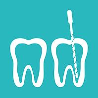 TCBA - Endodonte