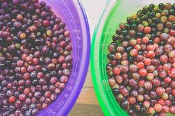 Alimentação balanceada oferecida no AfterSchool.