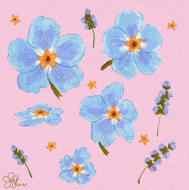 Forget me nots in Pink