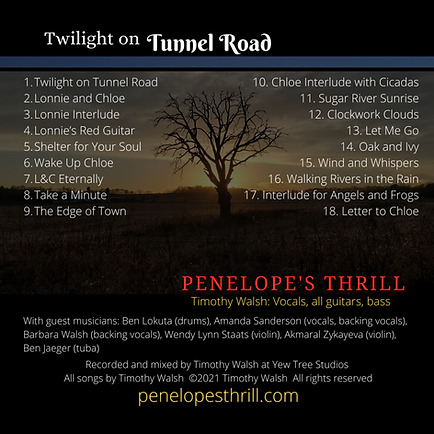 Twilight on Tunnel Road CD Back 3000x300
