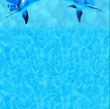 Golfinho 3D 0,7