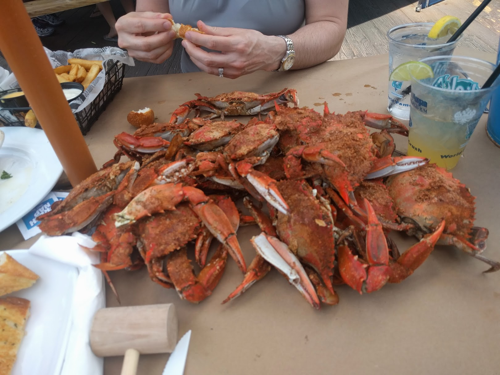 Calu Lab devours MD crabs