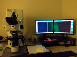 Confocal imaging in A&N core