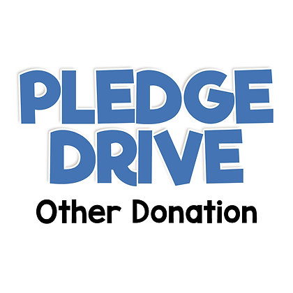 Pledge Drive Donation - OTHER