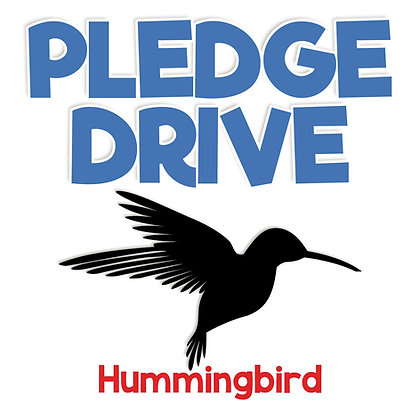 Pledge Drive Donation - HUMMINGBIRD