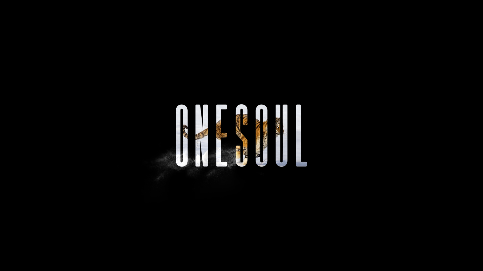 11_OneSoul_02.png