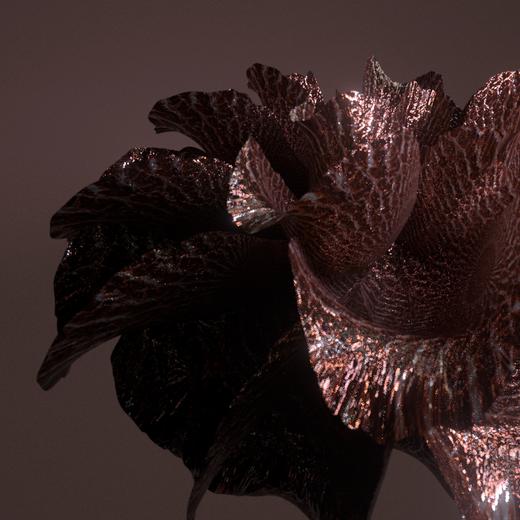 bloom_05_0079.png